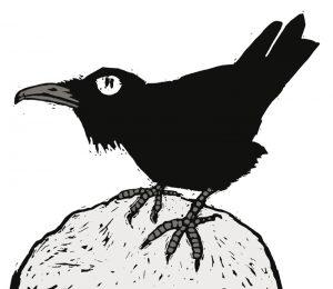 heksenvogel1_zwarte-kraai