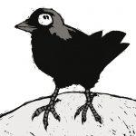 heksenvogel2_kauw