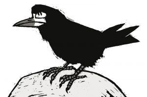 heksenvogel3_roek