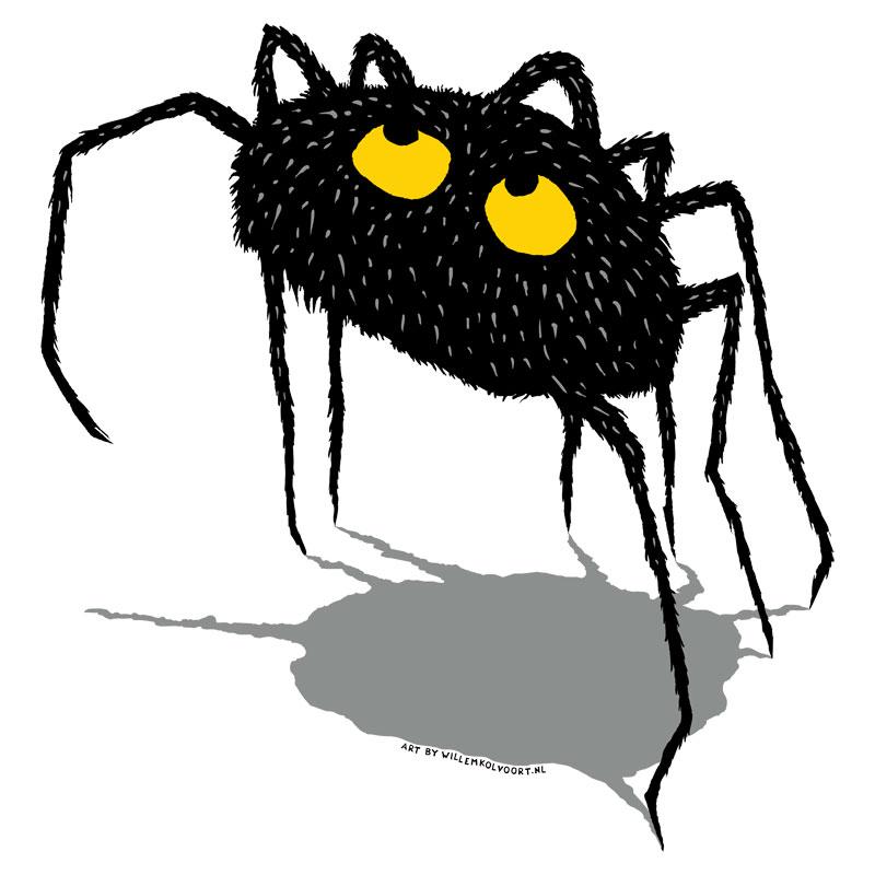 spider_los