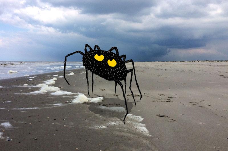 spider_site-nieuws