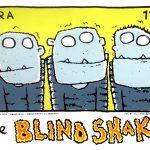 blindshake_willemkolvoort