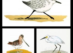 SALE | 3 vogelprenten met 35% PAASkorting!